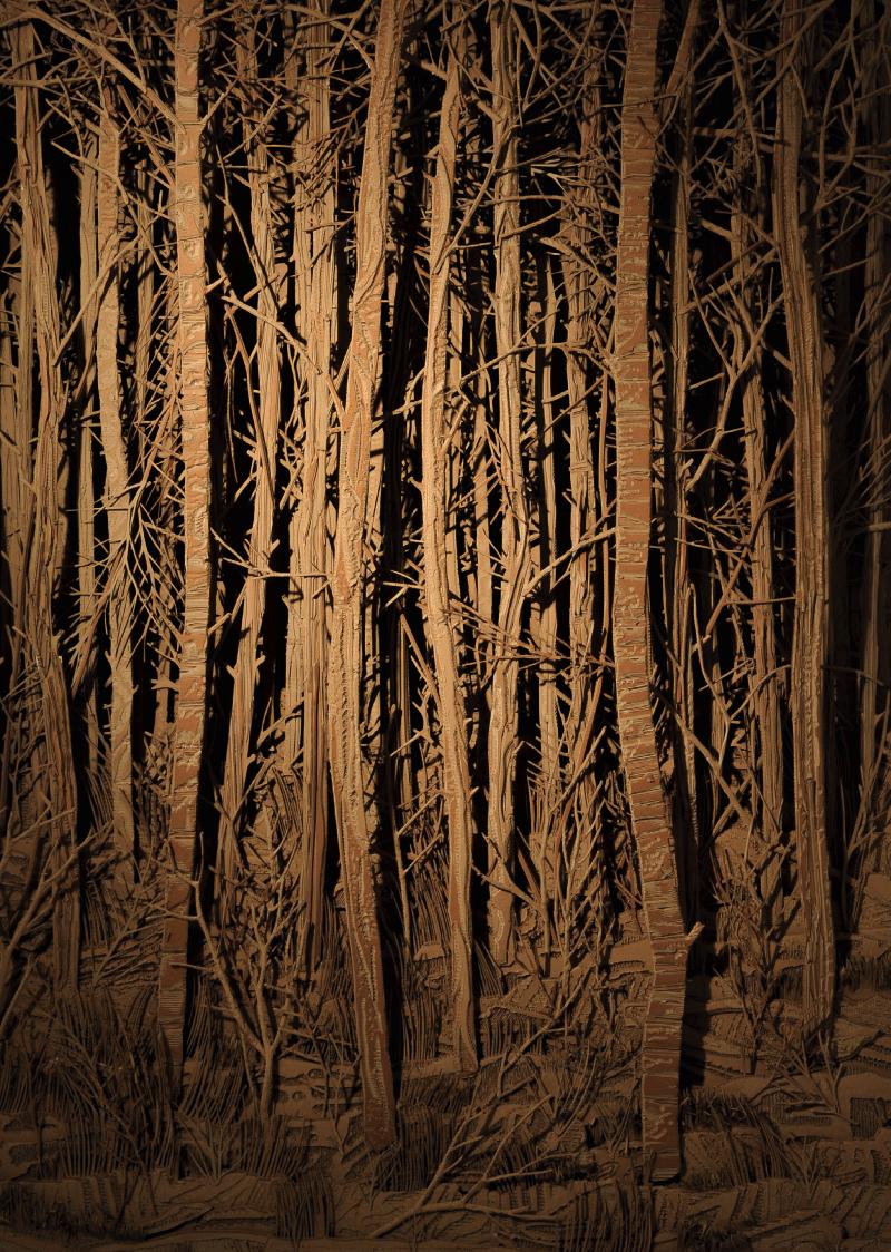 Eva Jospin Forêt 2015 Bois et carton 245x170x30cm (961/2x667/8x113/4in.) Courtesy de l'artiste et Galerie Suzanne Tarasieve, Paris © Olivier Toggwiller