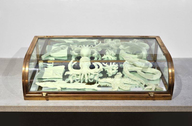 Mark Dion Souvenir from Mysterious Seas, 2015 Vitrine de verre et laiton, objets en papier mâché, peinture fluorescente 20 x 77 x 40 cm © Rebecca Fanuele Courtesy de l'artiste et galerie In Situ - fabienne leclerc, Paris Collection privée
