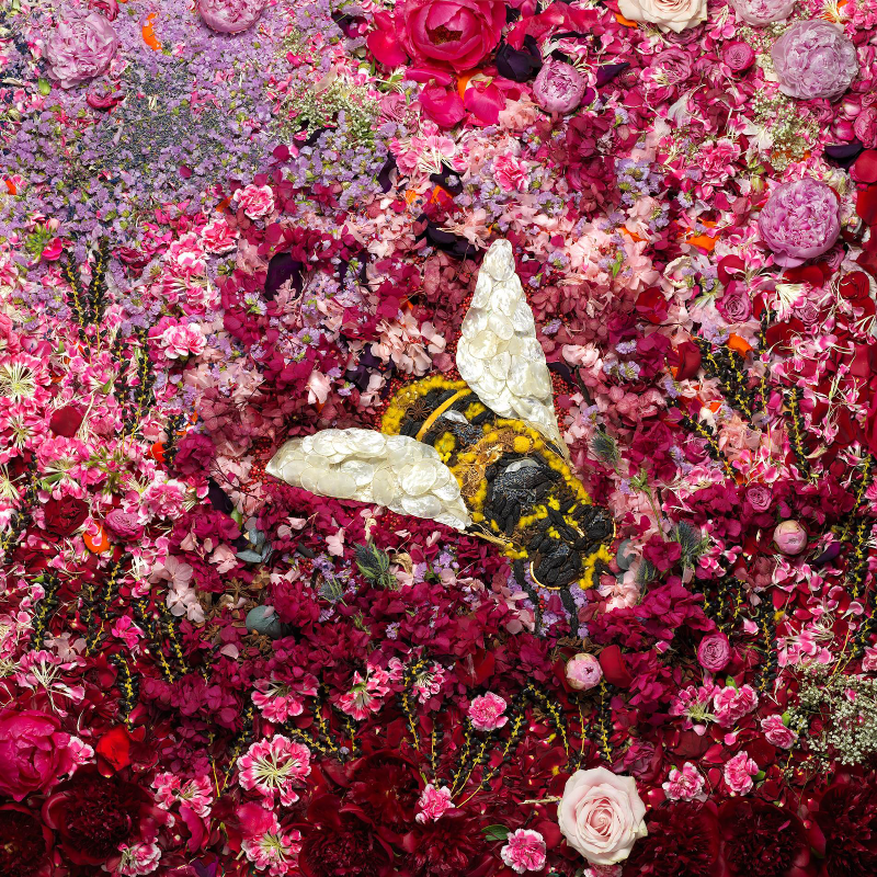 Vik Muniz Bee 2016, Photographie 180 X 180 cm Courtesy Vik Muniz © Vik Muniz
