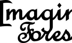 Imagine Forest - Safia Begum