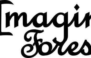 Imagine Forest - Safia Begum