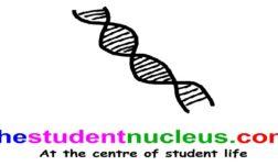 Student-led business 'thestudentnucleus.com'